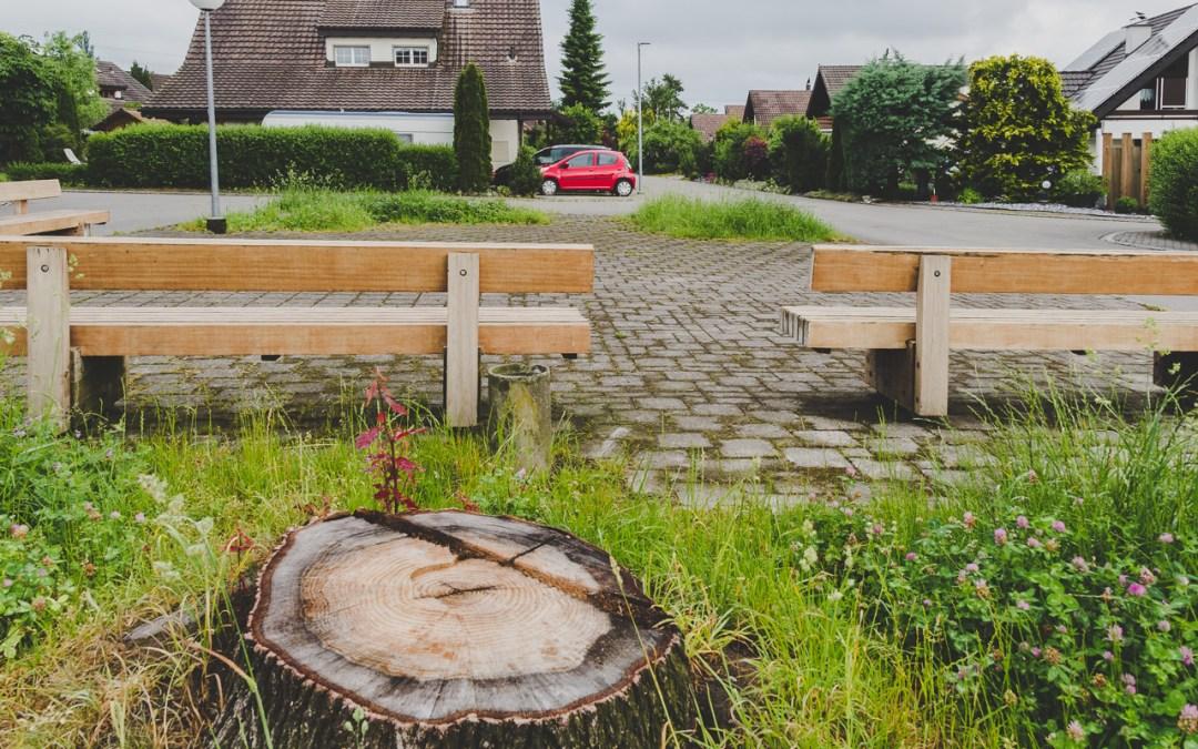 Illegale Baumfällung - Schadensersatzberechnung in Steinach