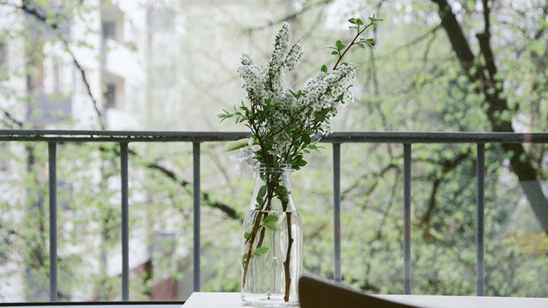 nature flowers table balcony