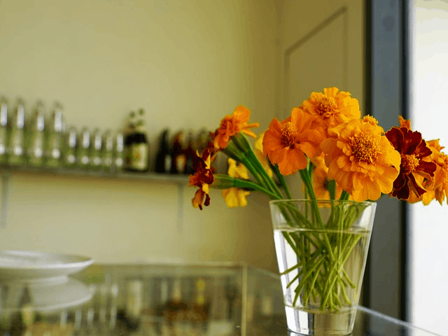 3 Common Types Of Outpatient Alcohol Recovery Programs