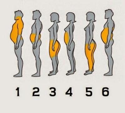 jenis gemuk dan lemak berkumpul