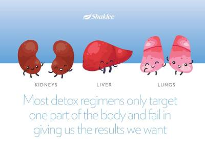 program detoks shaklee