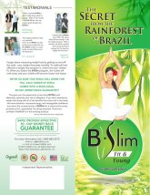 Lose Weight For The Last Time B-Slim Brochure 25 Pack