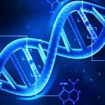 Apra, Facoltà di Bioetica: al via Corso di perfezionamento A.A. 2018 -2019