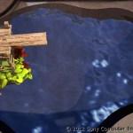 Cliff Diving PS Vita 04