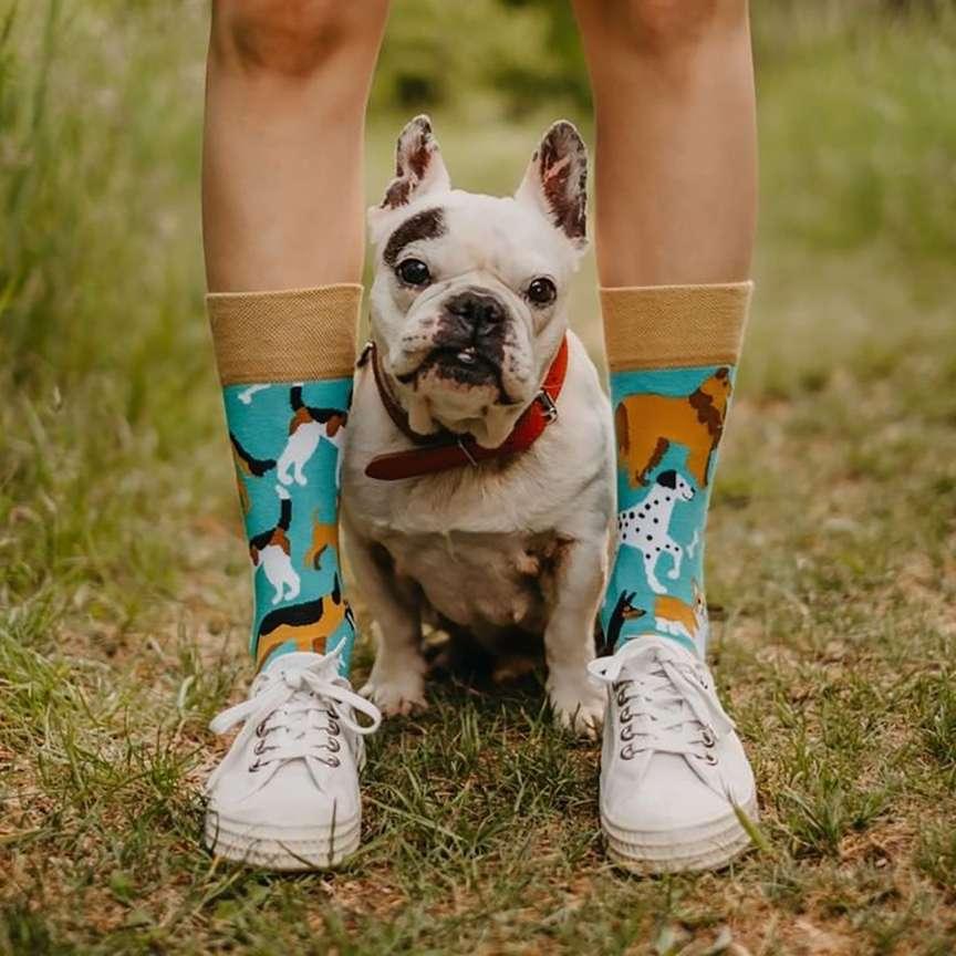 calzini per gli amanti degli animali