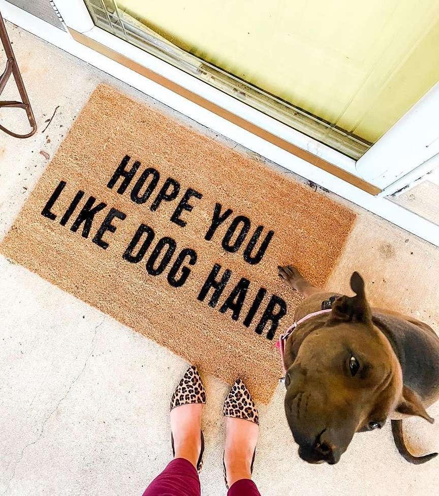 cane davanti alla porta