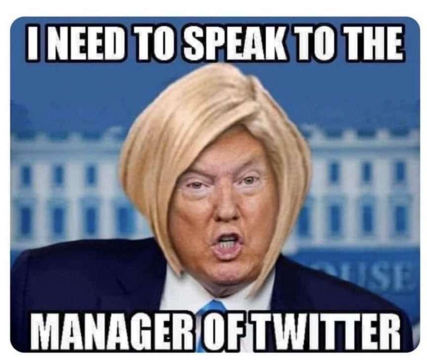 trump meme twitter