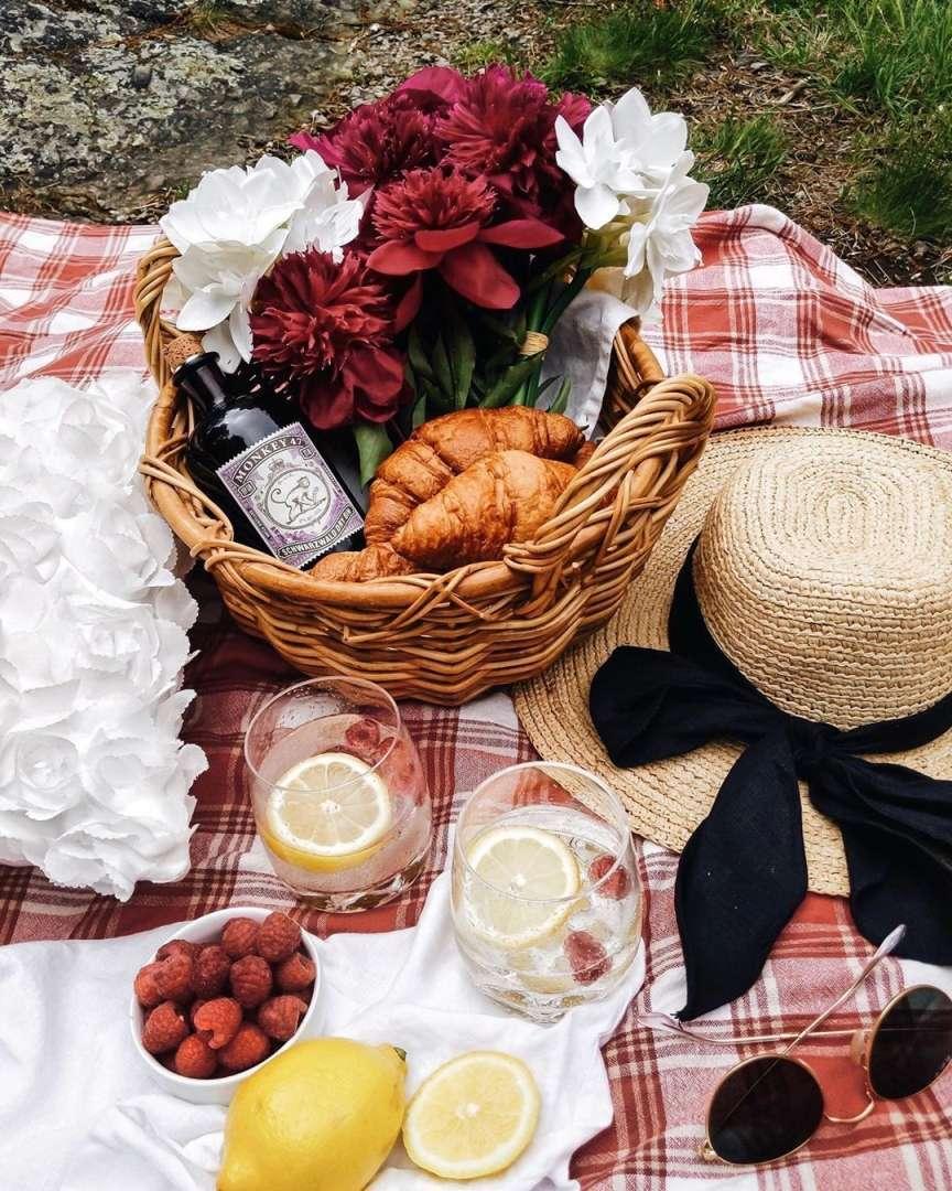 cose per il picnic
