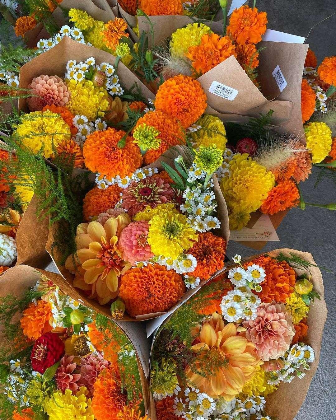 fiori autunno