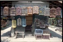 yogya-bird-market-004