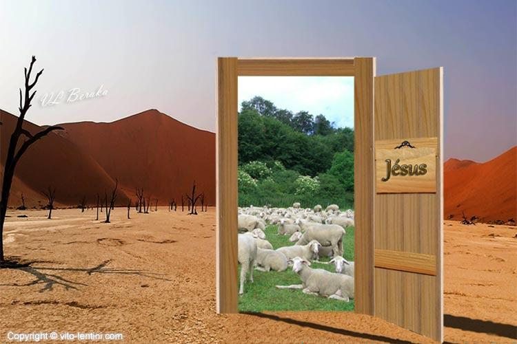 Camp de Jésus