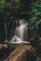 Parque Estadual Turístico do Alto do Ribeira