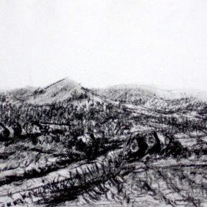 Panorama avec parapente1