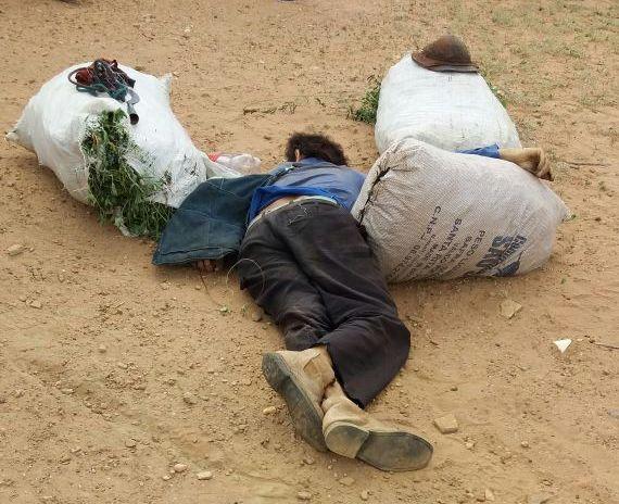 Agricultor é assassinado a tiros na zona rural do município de Camalaú