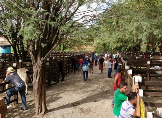 Prefeitura beneficiará produtores rurais da cidade de Monteiro neste sábado