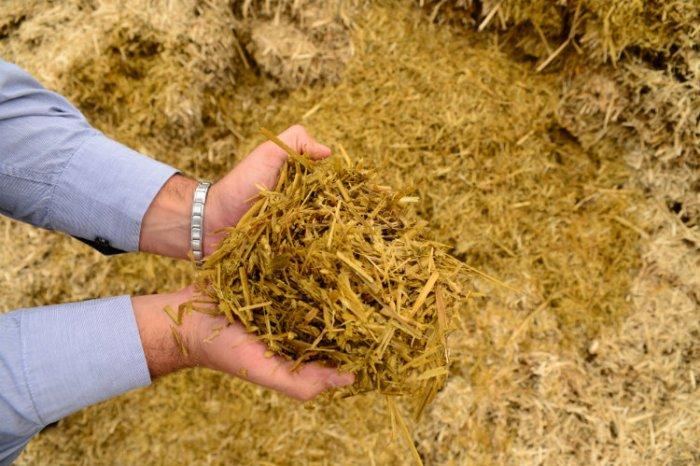 Secretaria de agricultura de Monteiro realiza serviços na zona rural do município