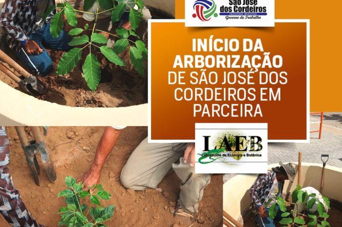 Prefeitura de São José dos Cordeiros arboriza praças em parceria com Emater e UFCG