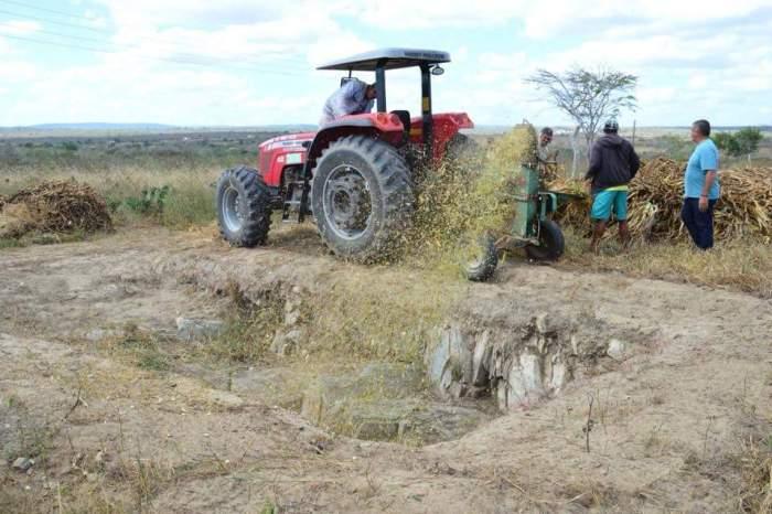 Prefeitura de Boa Vista auxilia criadores e produtores rurais na produção de silagem
