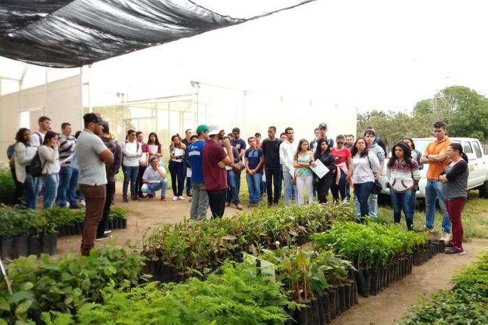 Grupo da UATEC/CDSA de Sumé visitam experimentos do Instituto Nacional do Semiárido