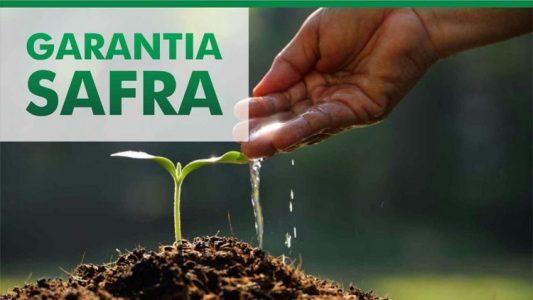 Governo Federal autoriza pagamento do Garantia-Safra para 03 municípios do Cariri