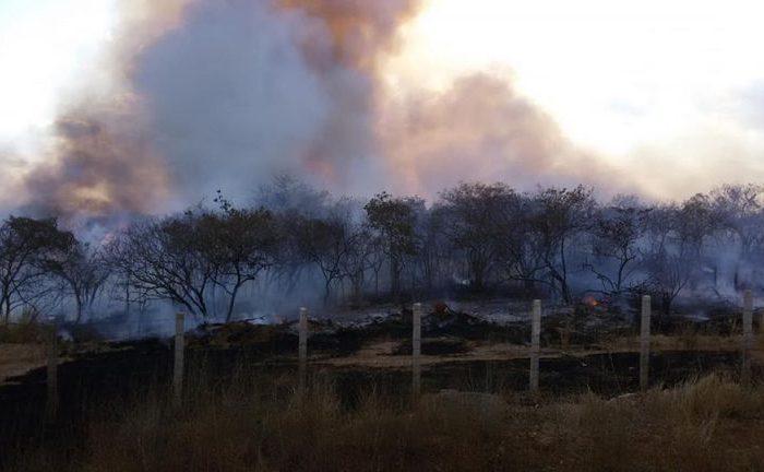 Inmet faz novo alerta de perigo de incêndios florestais em 81 municípios da PB, incluindo Cariri