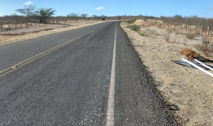 Jovem morre após colidir moto com animal no Cariri