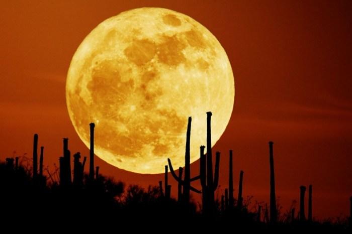 Eclipse total de Superlua acontece na noite de 20 para 21 de janeiro