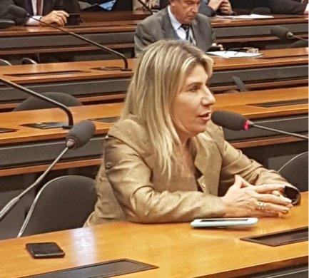 MOÍDOS DA REDAÇÃO: Edna Henrique gasta mais de R$ 223 mil com salários de assessores