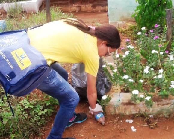 Vigilância em Saúde intensifica ações contra o mosquito Aedes Aegipty em Monteiro