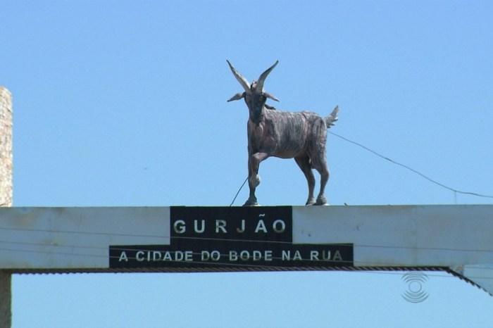 Festa do Bode na Rua de Gurjão tem início nesta quinta