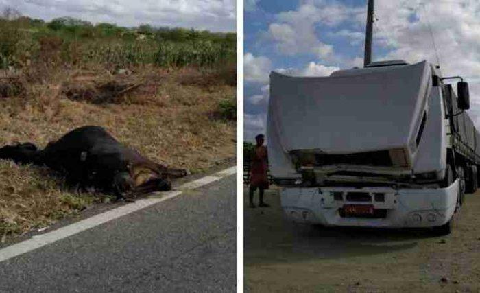 Acidentes são registrados na zona urbana e rural em Monteiro nesta terça-feira