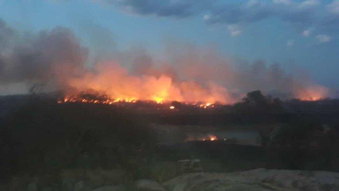 Incêndio de grandes proporções devasta zona rural de Monteiro e vários animais são mortos