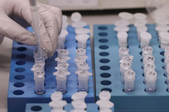 Paraíba passa de 30 mil casos confirmados de coronavírus