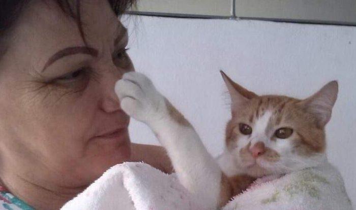 Caririzeira de 59 anos que morava no Rio de Janeiro morre por causa do Coronavírus