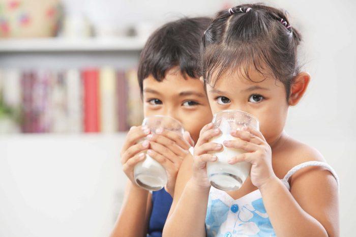 Secretaria de Desenvolvimento Social renova cartões de benefício do leite