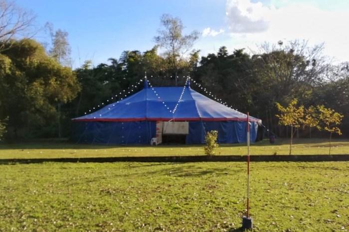 História do circo no Brasil é tema de conferência virtual gratuita