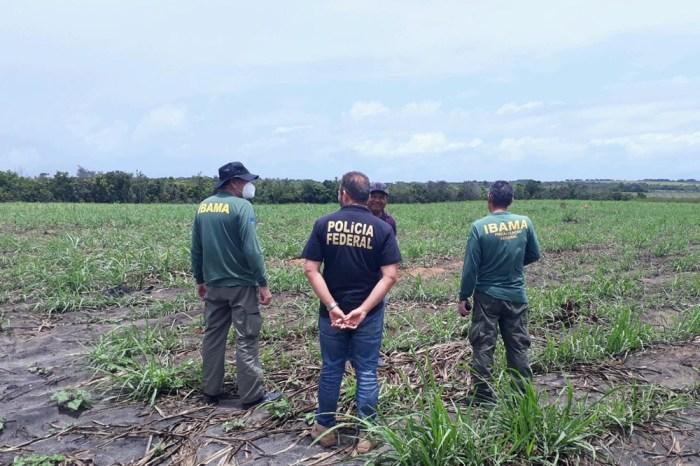 Operação identifica 45,8 hectares de área desmatada na PB