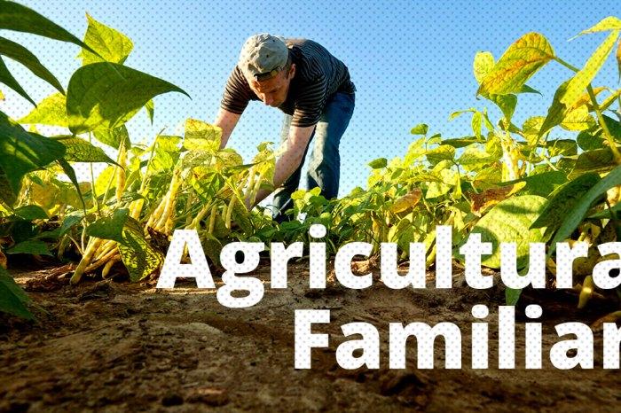 Prefeitura de Sumé lança chamada pública para compra de alimentos da Agricultura Familiar