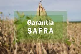 VEJA: 15 municípios do Cariri ficam de fora do Garantia Safra 2019-2020