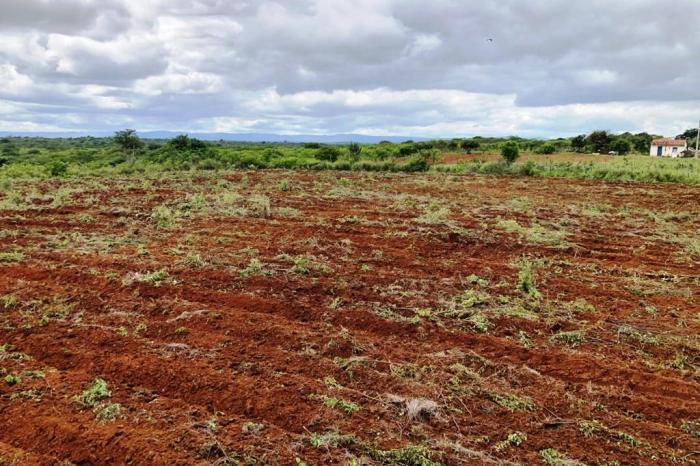 Em Monteiro, secretaria de agricultura realiza ações de corte de terra em várias comunidades rurais