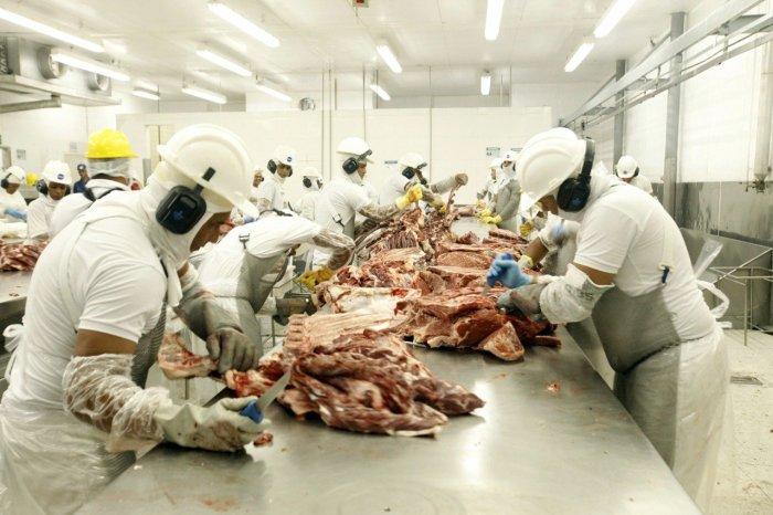 Ministério da Agricultura confirma dois casos de 'vaca louca' no Brasil