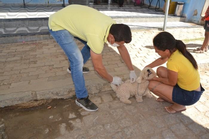 Em Monteiro: mobilização marca dia 'D' da vacinação contra raiva para cães e gatos