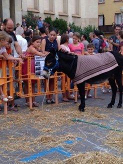 El burro va cridar l'atenció de tots els assistents, especialment dels petits // Laura Herrero
