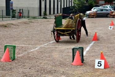 Una de les proves era col·locar el carro en un punt determinat // David Guerrero