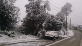Imatges cedides per l'ADF en els seus trajectes de visita als terrioris afectats per la nevada // Elisenda Colell
