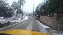 Les vies de munyanya, les més afectades per la nevada // ADF Puigmadrona Olorda