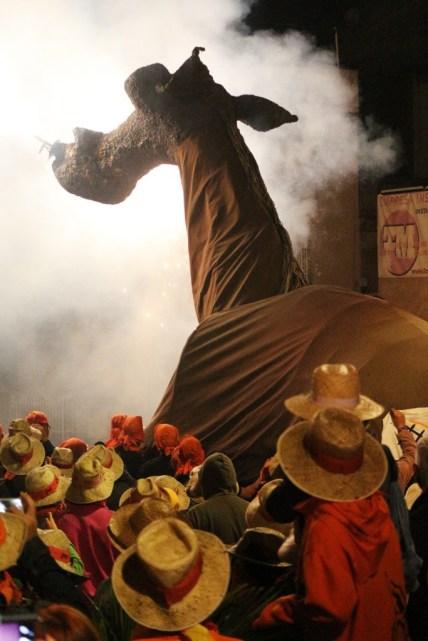 correcuita camell molins de rei 2017 24