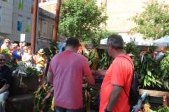 Diada Nacional de Catalunya Viu Molins de Rei 2018 (184)