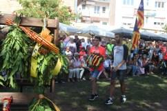 Diada Nacional de Catalunya Viu Molins de Rei 2018 (188)