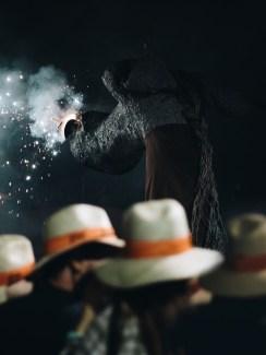 Aida Atencia el Camell Viu Molins de Rei 2018 (79)